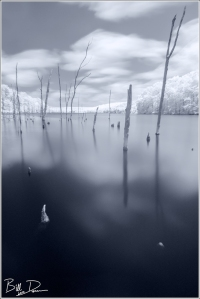 Council Bluff Lake - Infrared