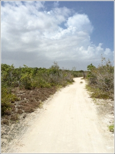 Cabo Rojo Trails